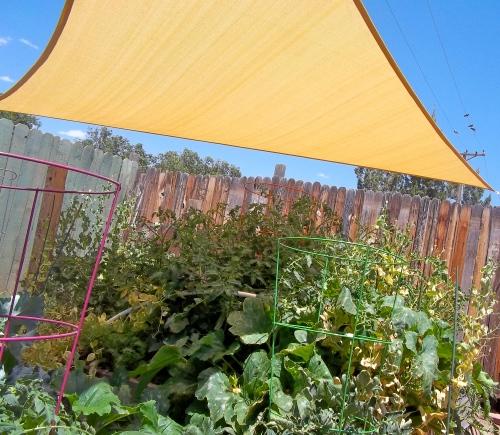 gardening, sun sail